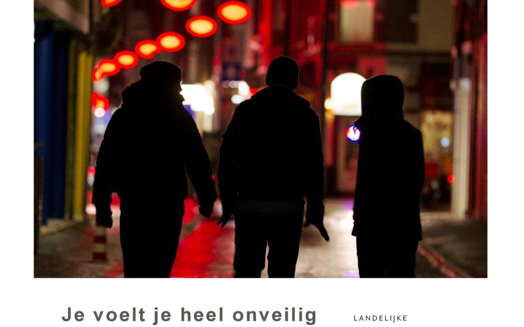 Je voelt je heel onveilig en heel alleen…Burgers over de impact van 'ogenschijnlijk onaantastbaren'. Amsterdam/Rotterdam, 2013